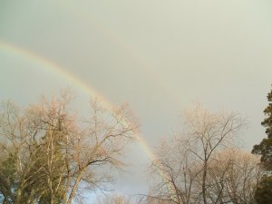 winter rainbow